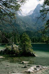 Der Zauberwald am Hintersee in Berchtesgaden